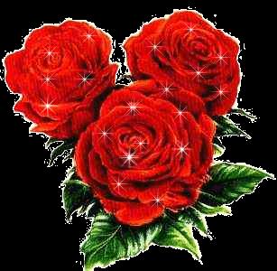 kwiatki4
